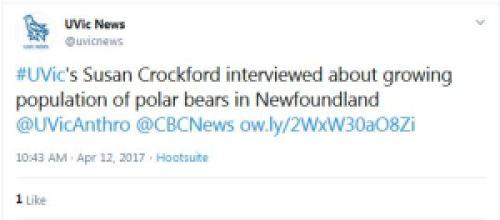 UVicNews tweet about Crockford CBC polar bear interview 12 April 2017