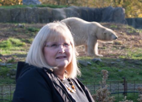 Blijdorp Zoo, Rotterdam, outside the polar bear enclosure. 17 November 2019.