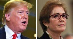 Trump and Yovanovitch composite